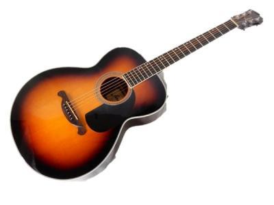 James JF350TS アコースティック ギター アコギ ソフトケース付 音楽 楽器 機材 機器 6弦