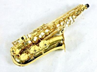 antigua アンティグア GL アルトサックス 彫刻 ゴールド 管楽器 ハードケース付