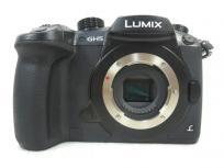 Panasonic LUMIX DC-GH5 GH5 ミラーレス一眼カメラ ボディ