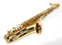 Antigua 3100 テナー サックス ハードケース 付 楽器の買取