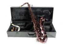 CannonBall キャノンボール T5-R テナーサックス 管楽器 ハードケース付