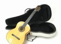 Aria A-100F アコースティック ギター アコギ 楽器 演奏 音楽 ケース 付 アリアの買取