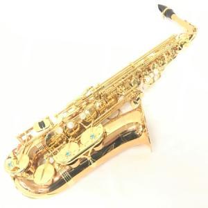 YANAGISAWA ヤナギサワ WO2 アルト サックス 管楽器 ケース マウスピース リガチャ 付 楽器