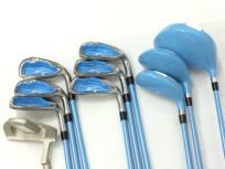 WORLD EAGLE FL-01 V2 アイアン ウッド ゴルフクラブ 10本 キャロウェイ キャディバッグ セット