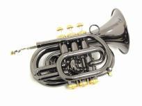 CarolBrass CPT-3000-GLS ポケットトランペット キャロルブラス 管楽器の買取