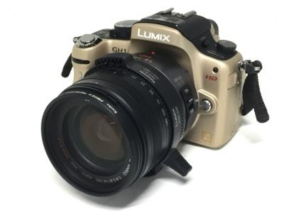 Panasonic LUMIX DMC-GH1 ミラーレス 一眼カメラ レンズキット
