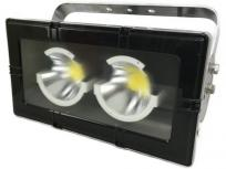IWASAKI 岩崎電気 ECF22101/N LED投光器 レディオックフラッドアーバンビュー2 縦長配光 タテ長 昼白色