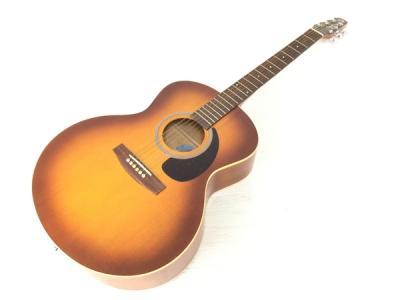 Seagull Entourage Mini Jumbo Rustic アコースティックギター 弦楽器 ハードケース付 趣味 音楽 シーガル
