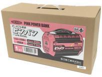日動工業 LPE-R250L ポータブル電源 電動工具