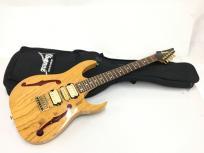 Ibanez エレキ ギター PGM800 ソフト ケース 付 アイバニーズの買取