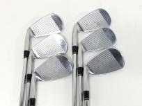 藤本技工 FG-Believer HIA-X 5-P Dynamic Gold CPT S200 6本セット アイアン ゴルフ クラブ
