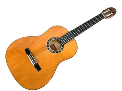 Valencia CG1K NA クラシックギター アコースティック アコギ 6弦 弦楽器