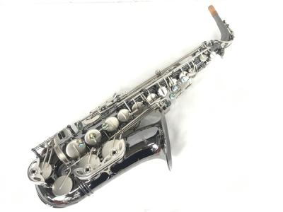 ANTIGUA POWER-BELL BLACK NICKEL&CLASSIC NICKELKEY アルトサックス 管楽器 アンティグア