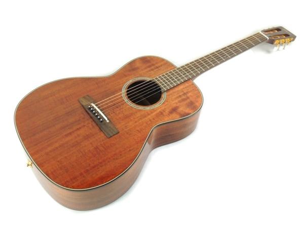 TAKAMINE PTU40IN アコースティックギター ケース付